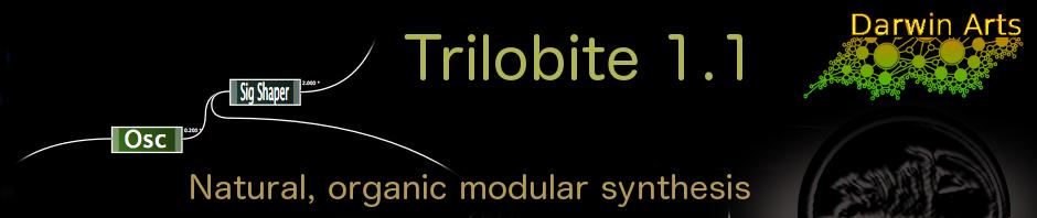 trilobute_1_1_site_header